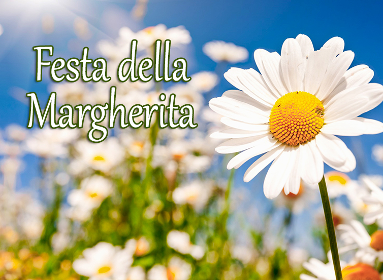 Festa della Margherita